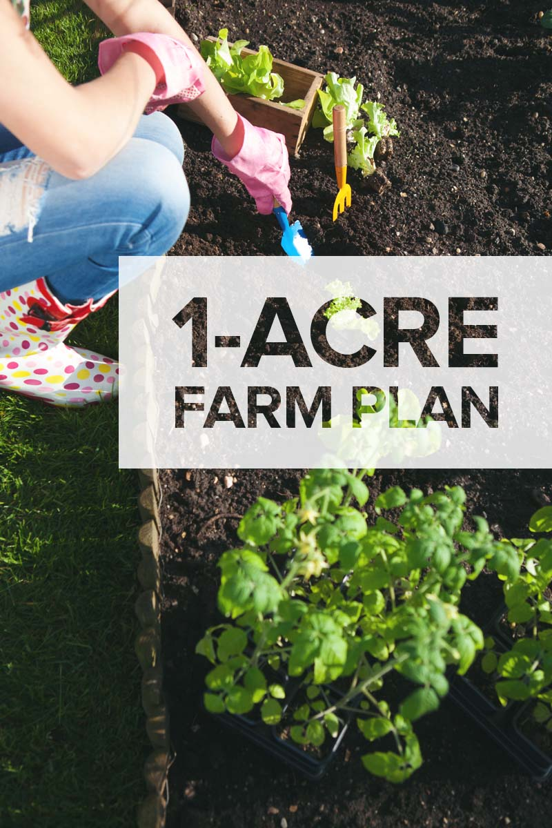 1 Acre Farm Plan: Hereu0027s What To Plant, Raise, And Build On A Smaller Land