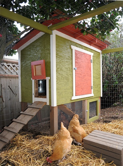 This Raised Chicken Coop Is Perfect If You Dont Have A Big Area Or Re Not Raising Too Many Chickens In Your Flock Can See By The Image That