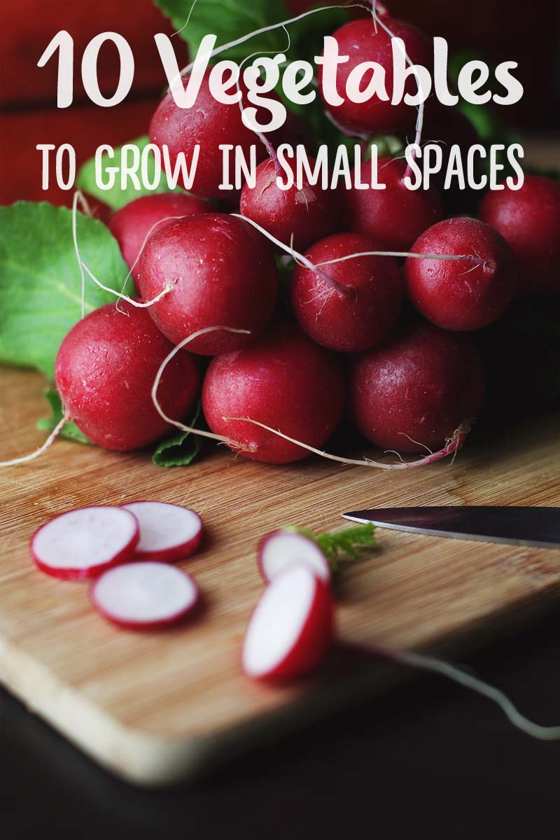 10 Best Vegetables And Fruits To Grow If You Don T Have Big Backyard
