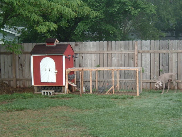 Robbu0027s Backyard Chicken Coop