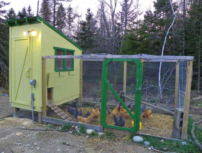 Portable Chicken Coop Building Plans