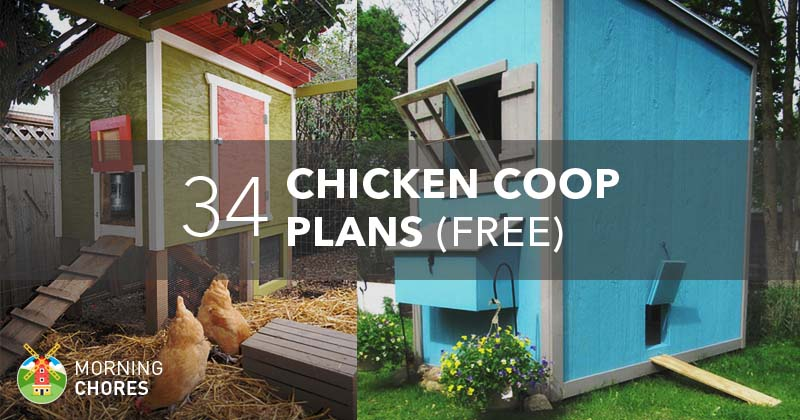 61 diy chicken coop plans that are easy to build 100 free for Build your own mobile home online