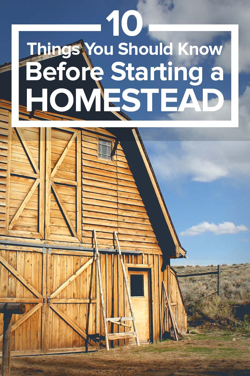 10 Reasons Your Seeds Aren39t Germinating Homesteading At Really Any Good Written Instructions So Here Is A Diagram Important Things You Should Know Before Starting Homestead
