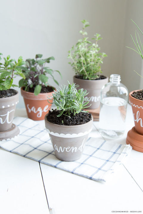 Indoor Garden Pot