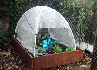 122 DIY Greenhouse Plans You Can Build This Weekend (Free) Raised Bed Hoop House Plans on pvc hoop greenhouse plans, raised beds from found materials, raised garden hoop, printable greenhouse plans, raised garden beds designs, garden bed plans, raised bed building plans, simple greenhouse plans, raised bed planting plans, raised bed planter box plans, raised bed greenhouse plans, raised bed gardening plans,