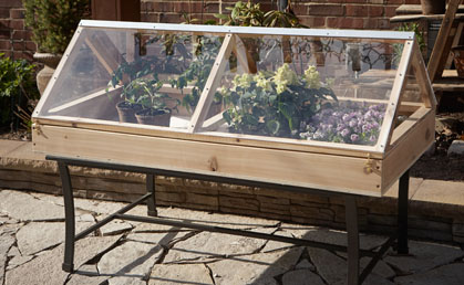 Perfect The Table Top Greenhouse
