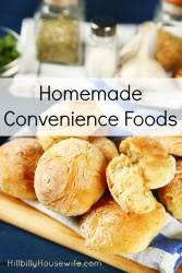 homemade-convenience-foods-167x250