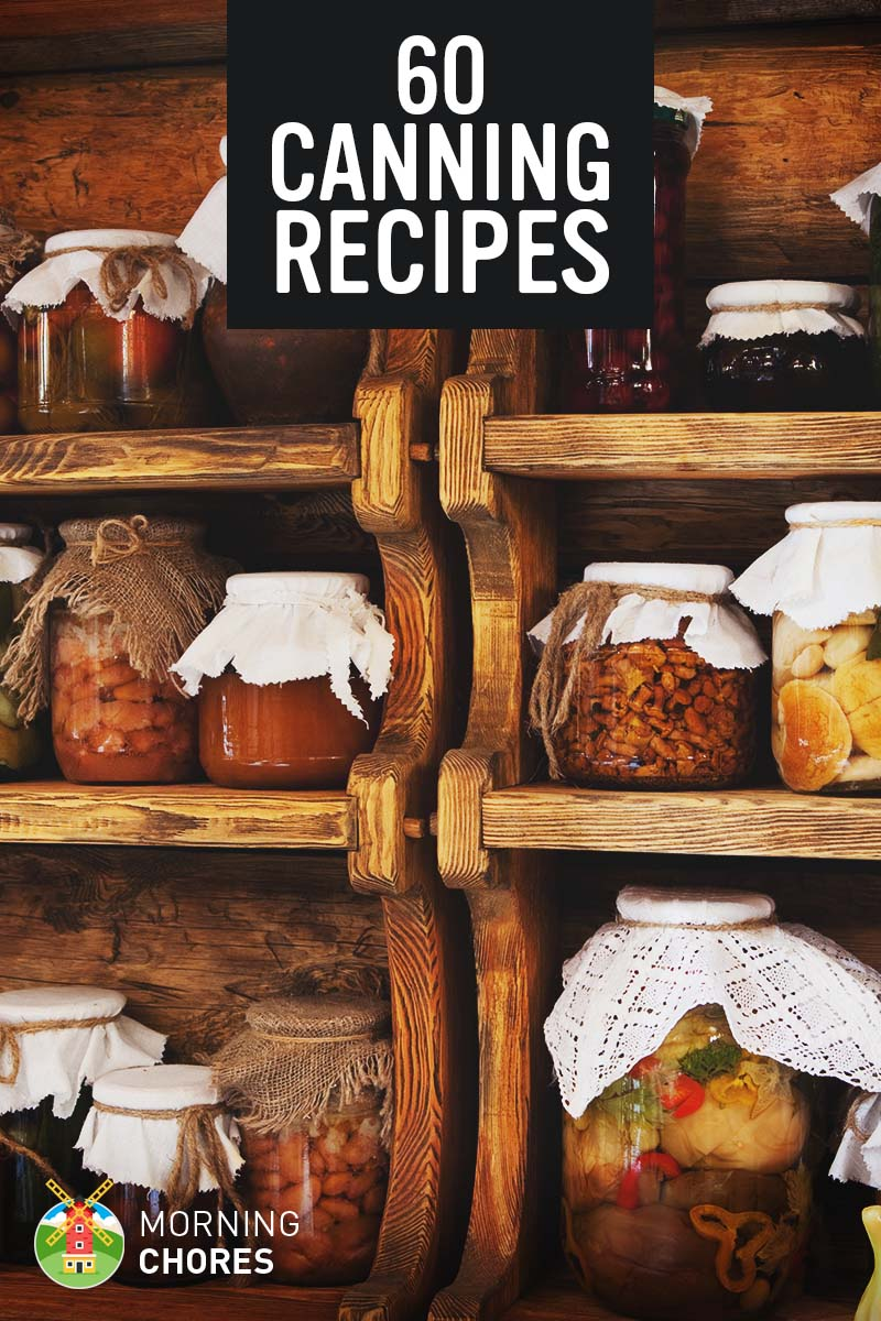 60 most popular canning recipes to preserve your fruits vegetables 60 most popular canning recipes to preserve your fruits vegetables and meats forumfinder Choice Image