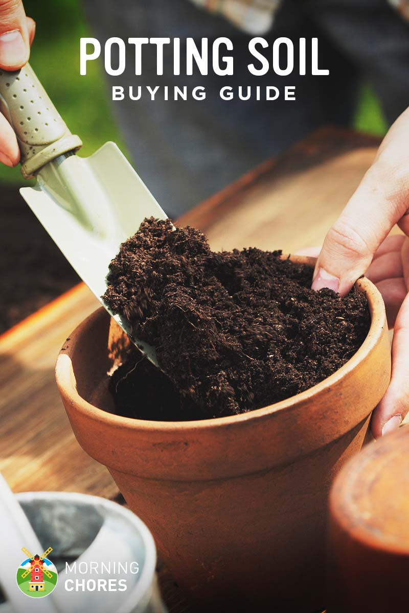 Best potting soil buying guide recommendation