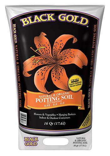 best potting soil