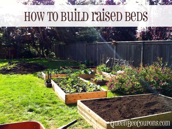 raised garden bed 11 - How To Build A Raised Vegetable Garden
