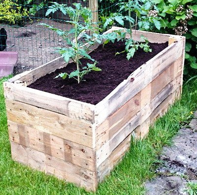 Raised Garden Bed 23