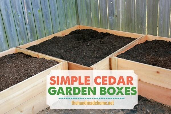 raised-garden-bed-3