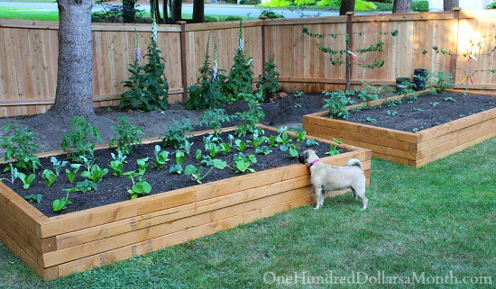 How To Build A Raised Flower Bed Against The House