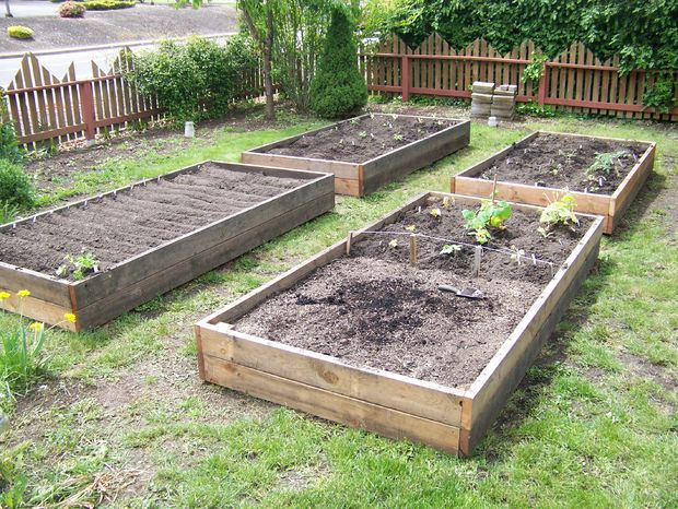 Raised Garden Bed 39