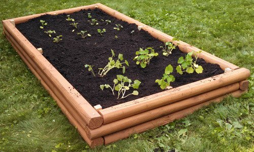 bed how raised projects a and wood gardening to outdoor frame wall concrete beds garden block project build