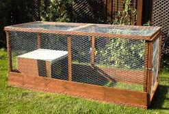 Outdoor Cat Enclosure Diy Cheap