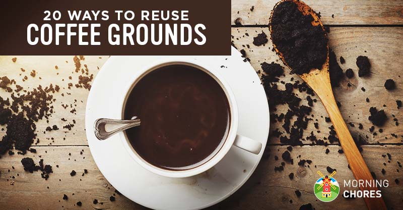 Can You Reuse Coffee Grounds To Make More Coffee