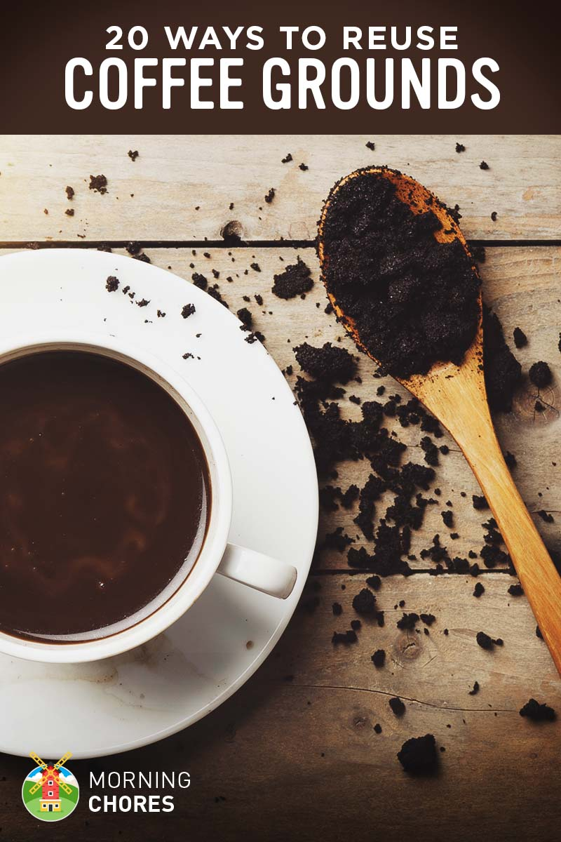 20 smart ways to reuse coffee grounds at your home and garden - Are coffee grounds good for your garden ...