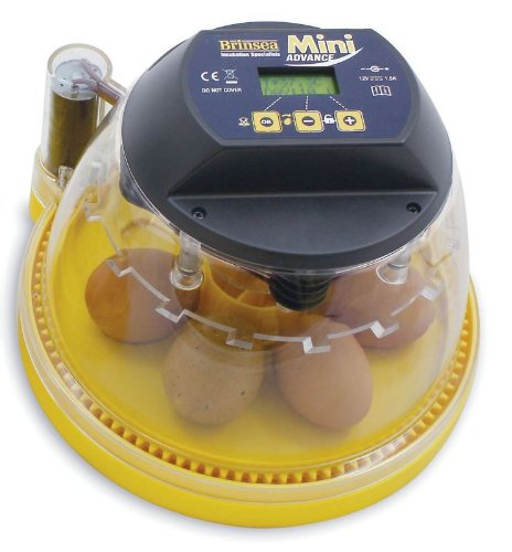 5 Best Egg Incubator For Chicken Eggs With Automatic  U0026 Manual Turner