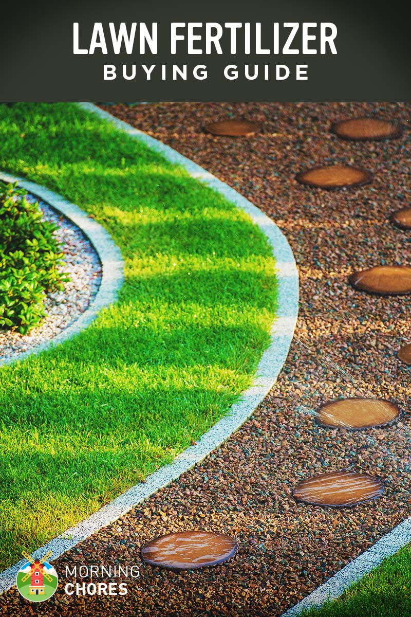 Best Lawn Fertilizer >> Best Lawn Fertilizer For Grass Buying Guide And Recommendation