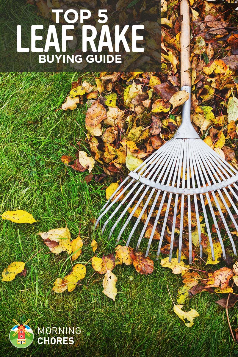 5 Best Emmy Beauty Looks You Will Want To Try In Real Life: 5 Best Leaf Rake For Your Garden And Lawn
