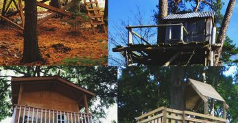 30 free diy tree house plans to make your childhood or adulthood dream a reality - Treehouse Plans 12x8