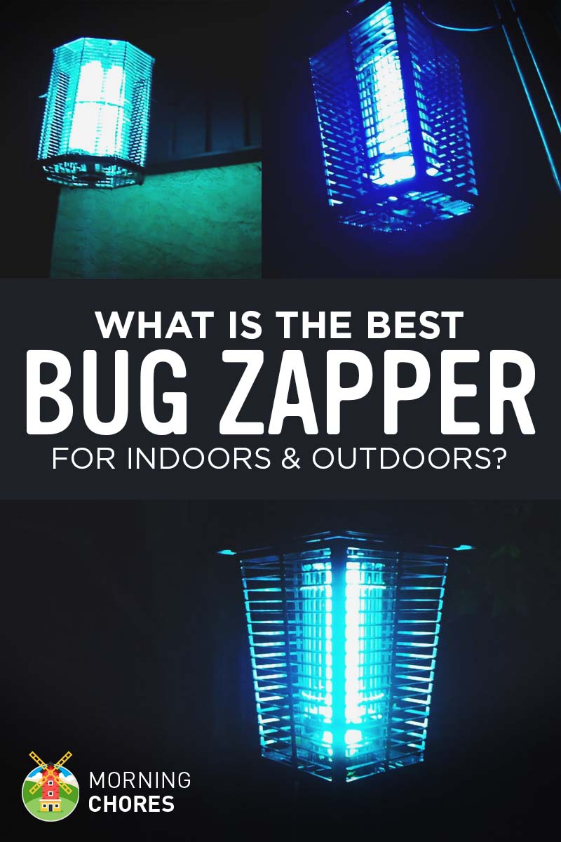 7 Best Bug Zappers For Indoors And Outdoors