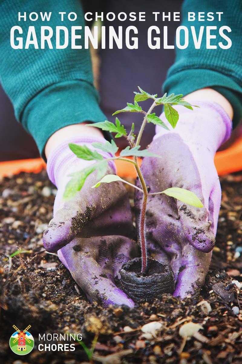 best gardening gloves. Best Gardening Gloves
