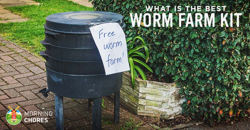 5 Best Worm Farm Kits For Garden And Fishing Reviews Buying Guide