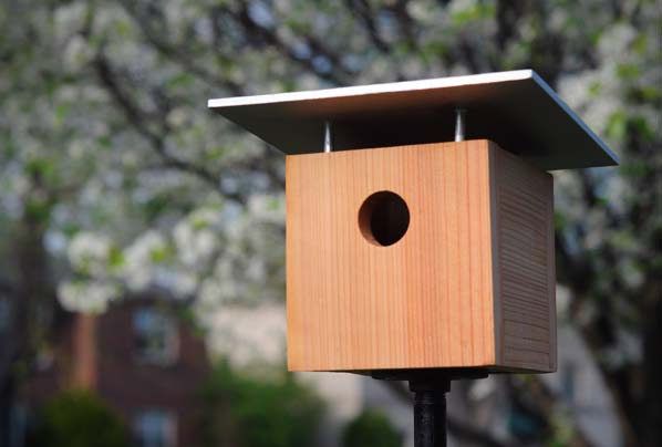no-woodworking-birdhouse