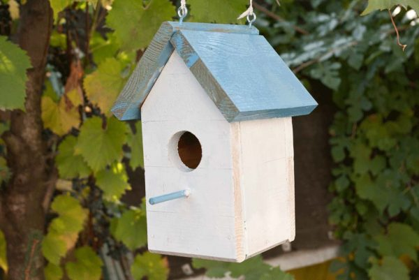 53 diy bird house plans that will attract them to your garden for Small bird house plans