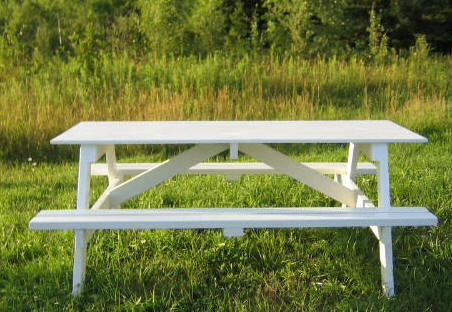 Free DIY Picnic Table Plans For Kids And Adults - One sided picnic table