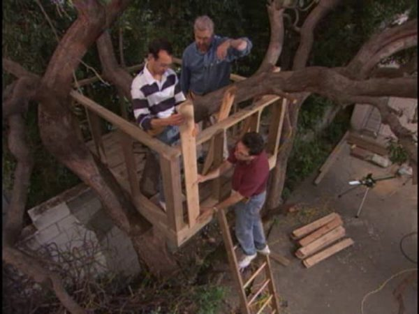 Diy Tree House Plans Amp Design Ideas For Adult And Free