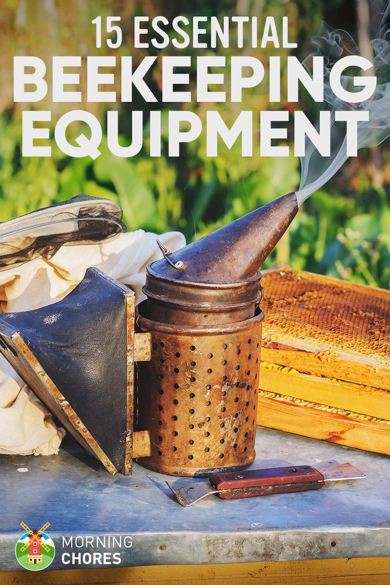 15 Essential Beekeeping Equipment and Supplies