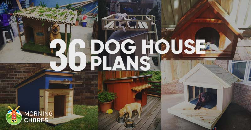 36 free diy dog house plans ideas for your furry friend malvernweather Image collections