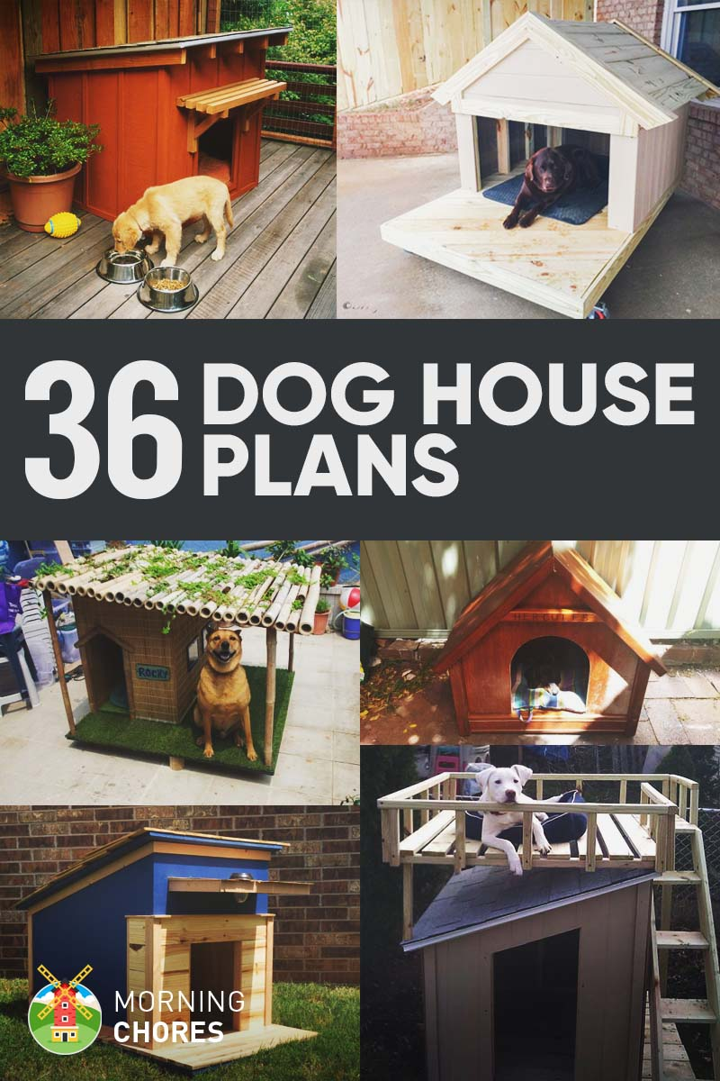 36 Free DIY Dog House Plans & Ideas for Your Furry Friend Backyard Shed Ideas For Dogs on ideas for backyard walls, ideas for backyard hot tubs, ideas for backyard lighting, ideas for backyard walkways, ideas for plastic sheds, ideas for backyard water features, ideas for backyard trellis, ideas for backyard landscaping, ideas for backyard cabanas, ideas for backyard porches, ideas for backyard fireplaces, ideas for backyard fencing, ideas for painting sheds, ideas for backyard gardens, ideas for backyard bridges, ideas for backyard floors, ideas for backyard stairs, ideas for backyard patios, ideas for small sheds, ideas for backyard trees,
