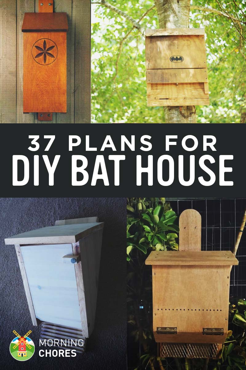 37 Free DIY Bat House Plans that Will Attract the Natural Pest ... House Plans With Bats on garden plans, bat outline template, bat romance, bat removal, florida home building plans, bat symbol, bat furry, bat traps, bat houses placement, bat houses that work, bird feeder plans, bat scat, bat drawings, bat box placement, bat food, bat houses product, bluebird feeder plans, bat boner, bat tile, chicken coop plans,