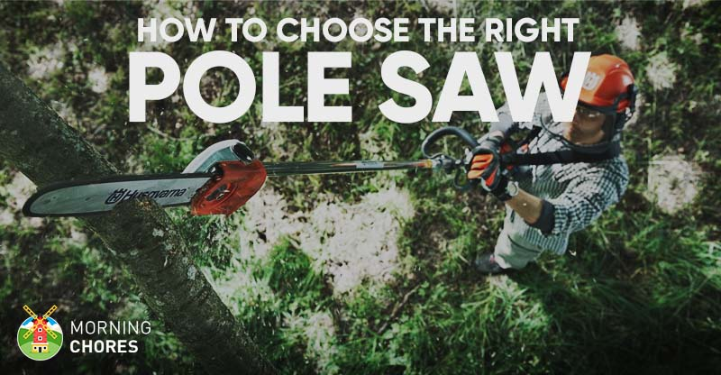 Best Pole Saw For Pruning Reviews Fb
