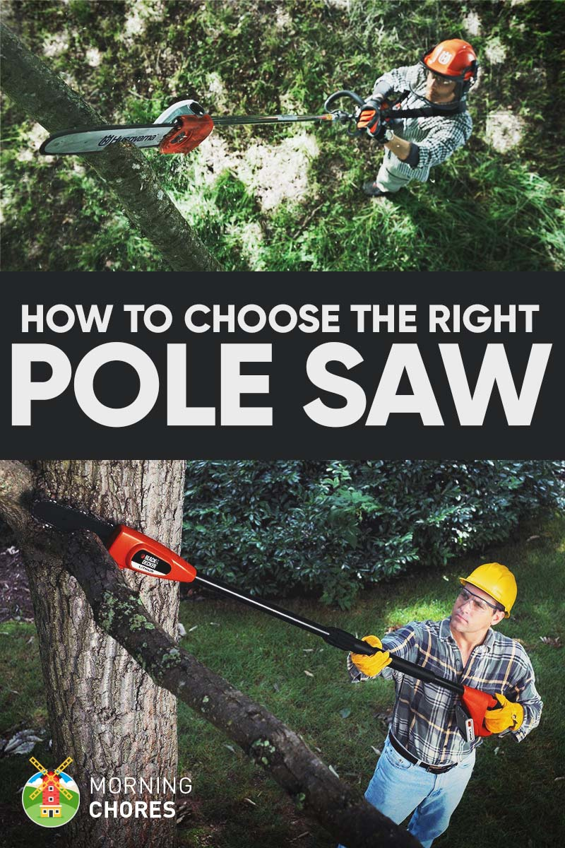 7 Best Pole Saw for Pruning Reviews