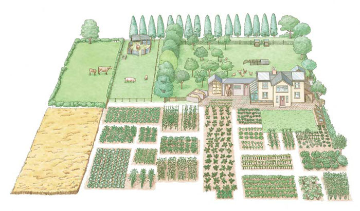 28 farm layout design ideas to inspire your homestead dream for Fish farms near me