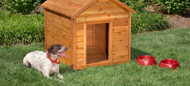 This Dog House Is Another Traditional Style. It Follows The Basic A Frame  Design Of A Typical Home. It Could Be Suitable For Most Any Size Dog, ...