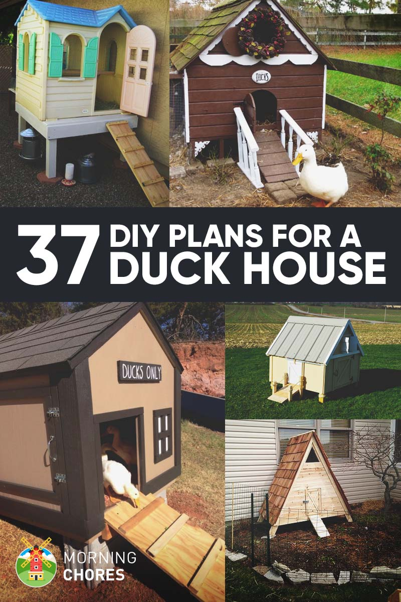 37 free diy duck house coop plans ideas that you can easily build