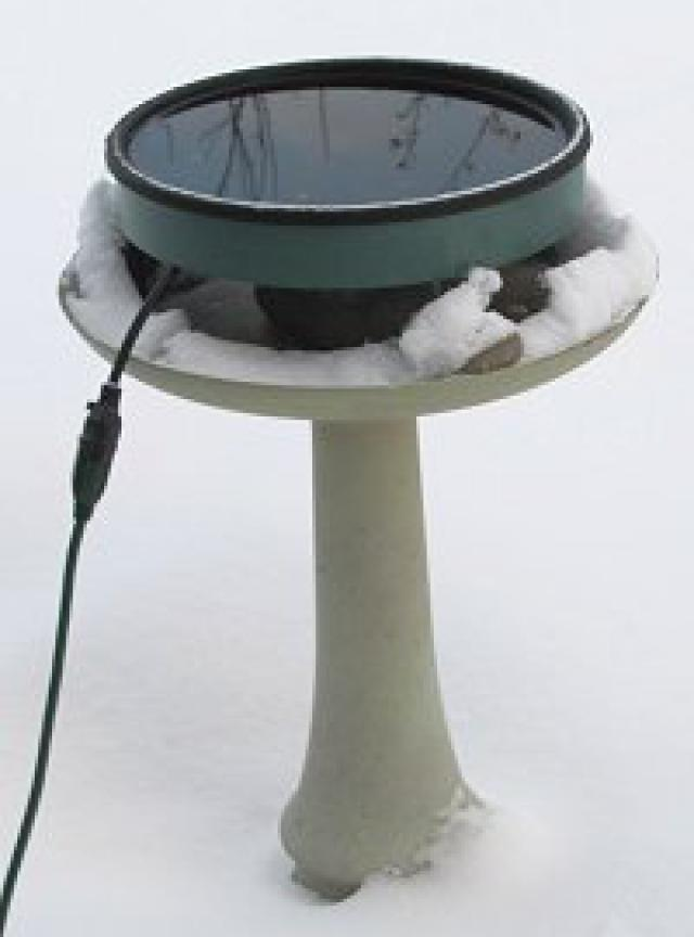 The Heated Bird Bath