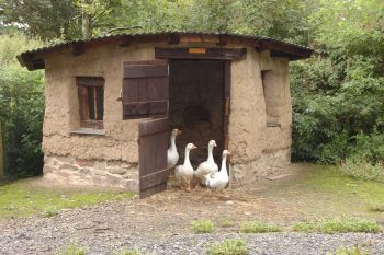 37 free diy duck house coop plans ideas that you can easily build the cobb duck house solutioingenieria Choice Image