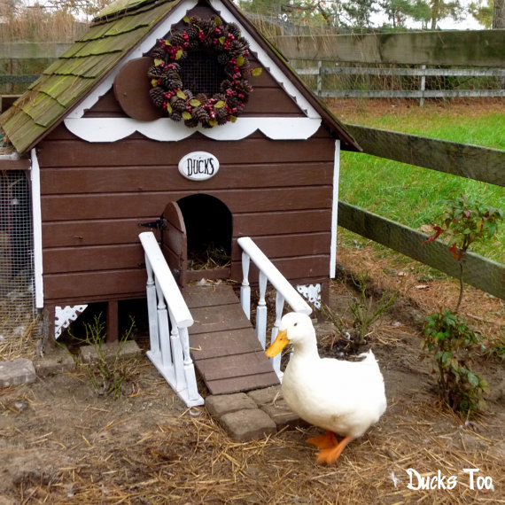 37 free diy duck house coop plans ideas that you can easily build the gingerbread duck house solutioingenieria Choice Image