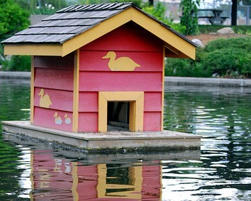 37 free diy duck house coop plans ideas that you can easily build the floating duck house solutioingenieria Choice Image