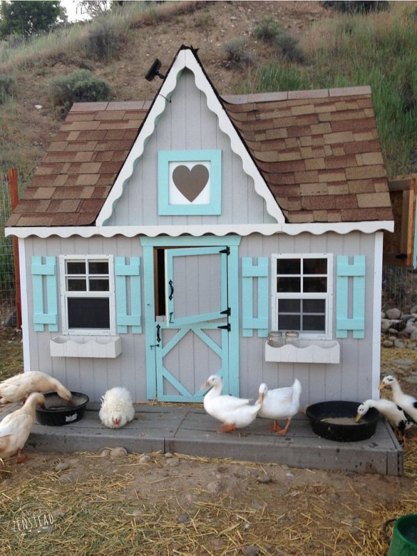 Cute Chicken Coop Plans