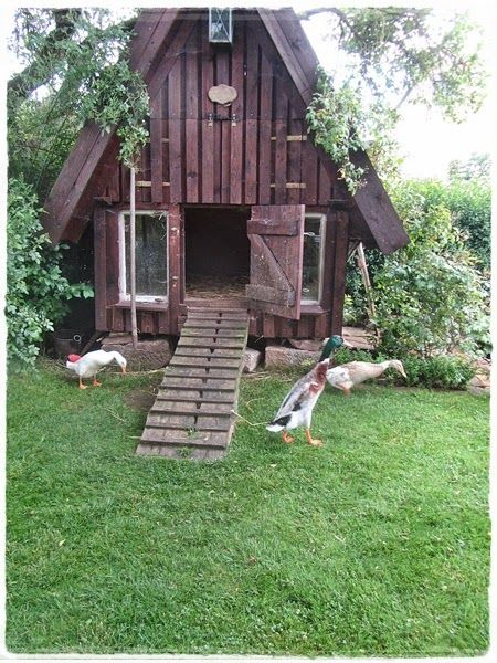 37 free diy duck house coop plans ideas that you can easily build the country duck house solutioingenieria Choice Image