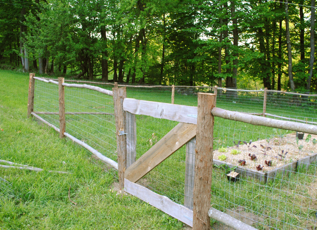 The Rustic Garden Fence. Fence 20